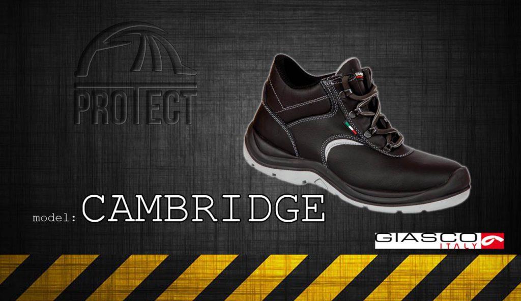 model-cambrige_